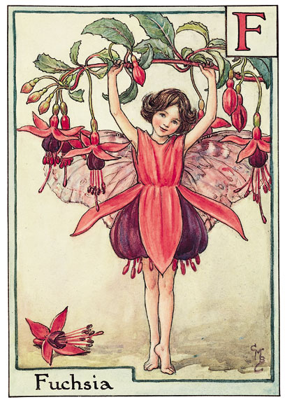 Cicely Mary Barker Fushsia flower fairy