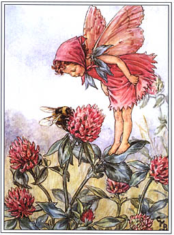 Cicely Mary Barker clover flower fairy
